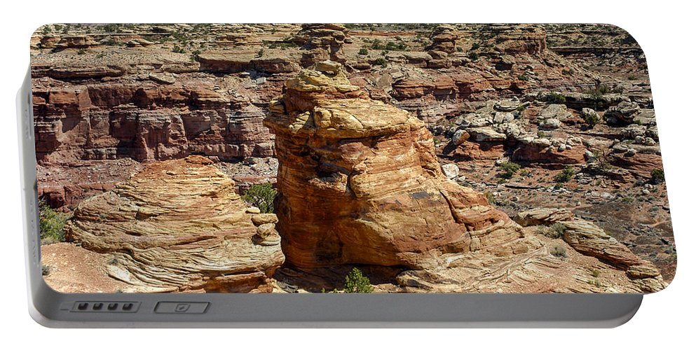 Slickrock Trail Needles District Canyonlands National Park Utah Trails Parks Canyon Canyons Mountain Snow Peaks Peak Mountains Rock Formation Formations Tree Trees Landscape Landscapes Desertscape Desertscapes Portable Battery Charger featuring the photograph Near And Far by Bob Phillips