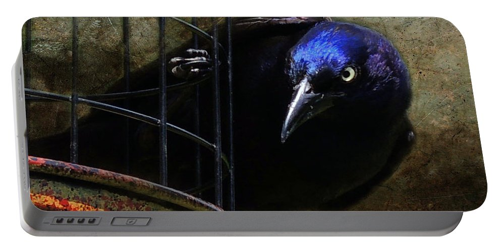 Nefarious Portable Battery Charger featuring the photograph Nefarious Eye by Mim White