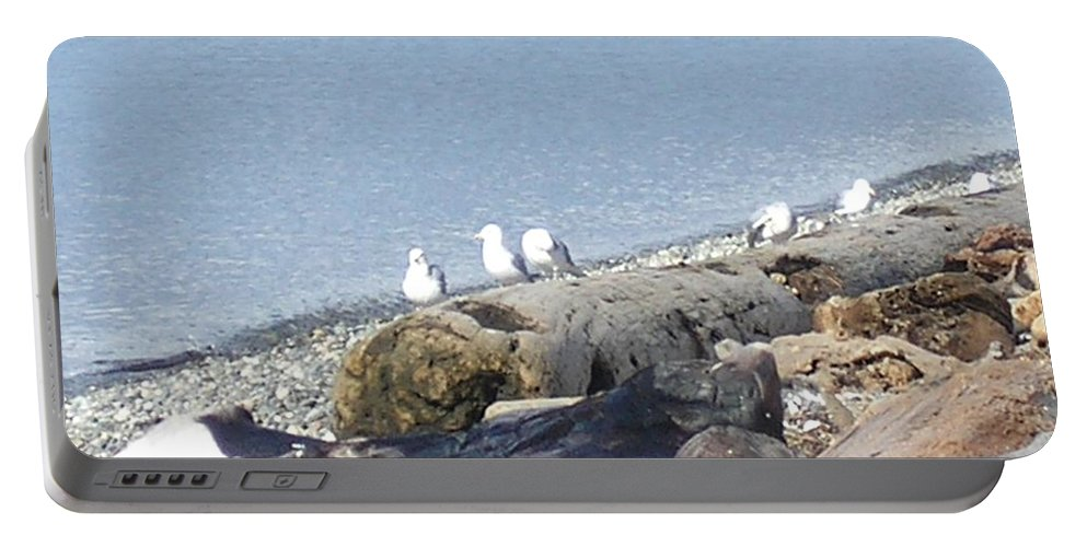 Seagulls Portable Battery Charger featuring the photograph Neighborhood 2 by Marcello Cicchini