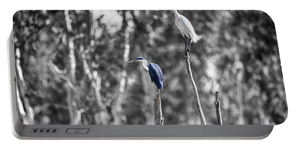 Pied Heron Portable Battery Charger featuring the photograph Neighbors by Douglas Barnard