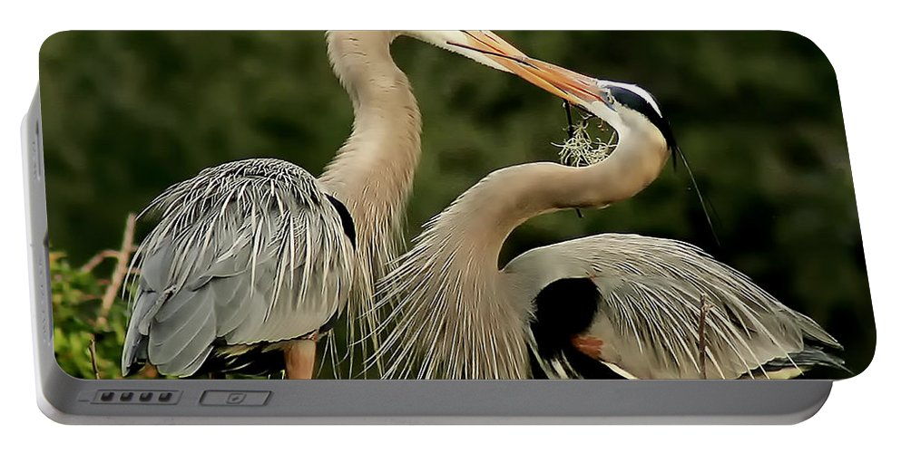 Bird Portable Battery Charger featuring the photograph Nesting by Pat Walsh