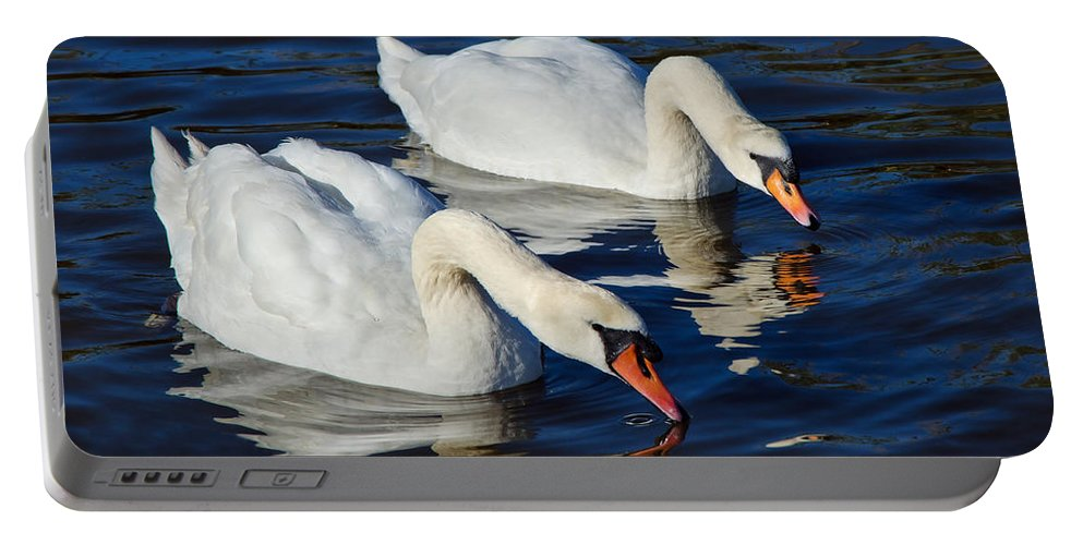 Swan.swans Portable Battery Charger featuring the photograph Never Drink Alone by Susie Peek