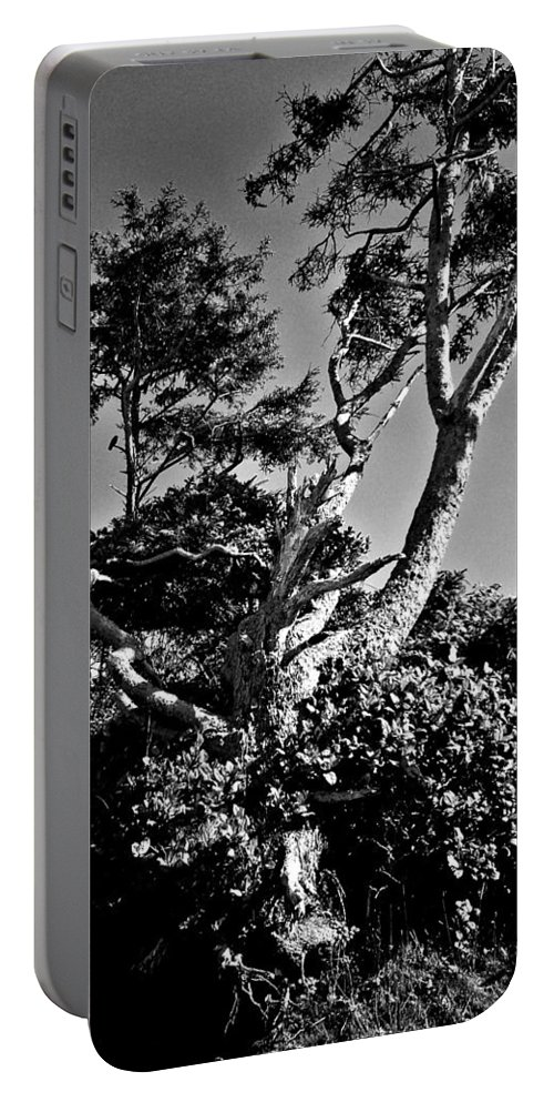 Nevermore Portable Battery Charger featuring the photograph Nevermore by Absinthe Art By Michelle LeAnn Scott