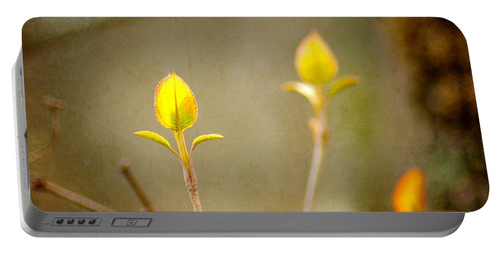 Forest Portable Battery Charger featuring the photograph New Beginnings by Bill Pevlor