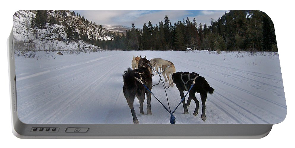Dog Portable Battery Charger featuring the photograph Riding Through The Colorado Snow On A Husky Pulled Sled by Toula Mavridou-Messer