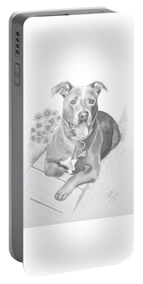 Pet Portrait Portable Battery Charger featuring the drawing Newman by Joette Snyder