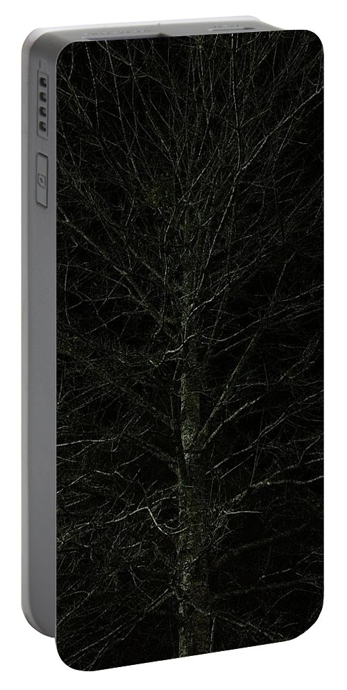 Nigh Time Portable Battery Charger featuring the photograph Night Tree by Joseph Yarbrough