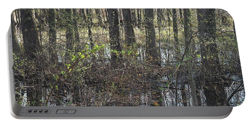 Creek Portable Battery Charger featuring the photograph Not A Chance by Joseph Yarbrough