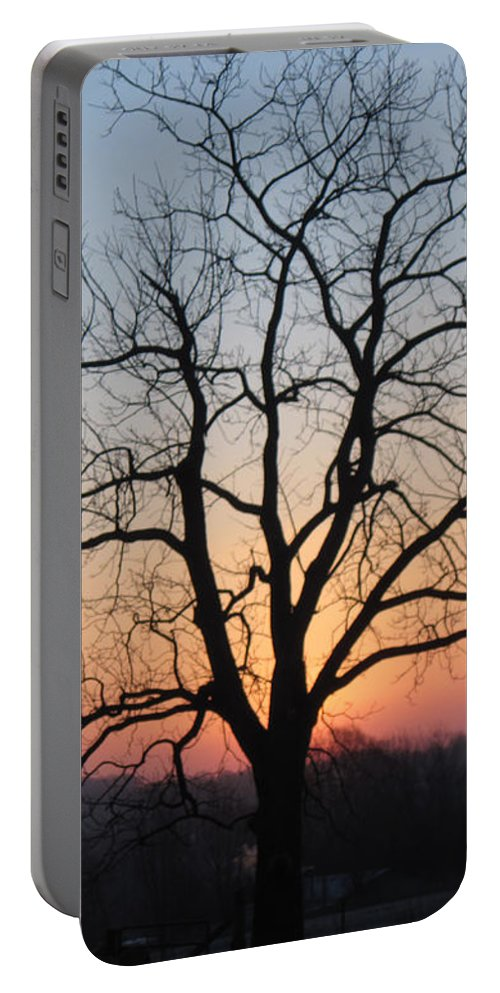 Sunrise Portable Battery Charger featuring the photograph November Walnut Tree At Sunrise by Conni Schaftenaar