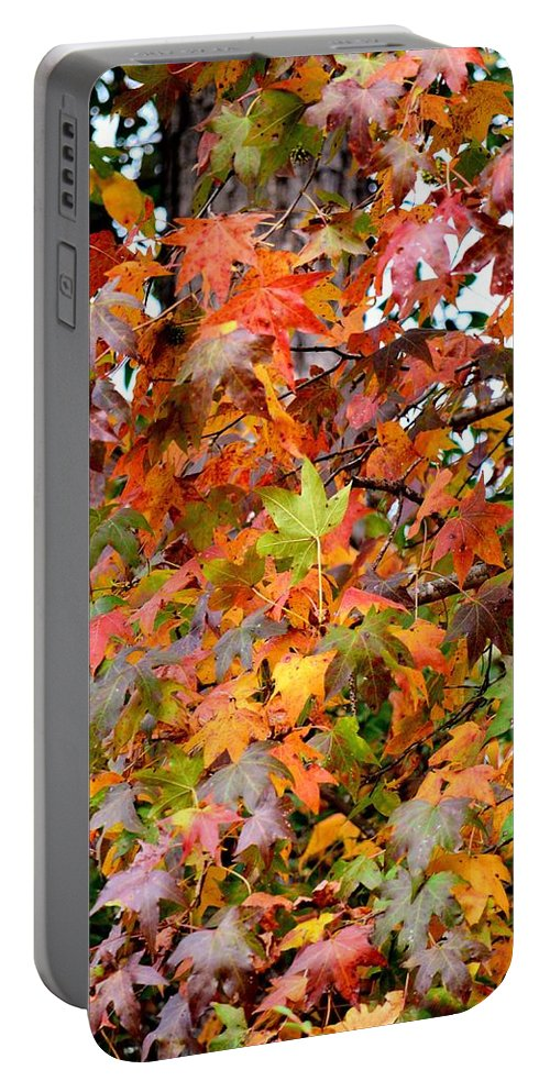 November's Maple Portable Battery Charger featuring the photograph November's Maples by Maria Urso