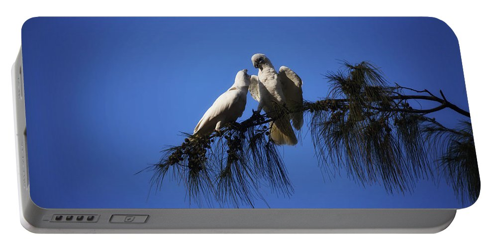Corellas Portable Battery Charger featuring the photograph Now You Listen To Me by Douglas Barnard