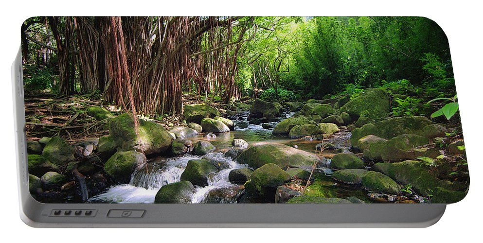 Banyan Portable Battery Charger featuring the photograph Banyan Nuuanu Stream by Kevin Smith