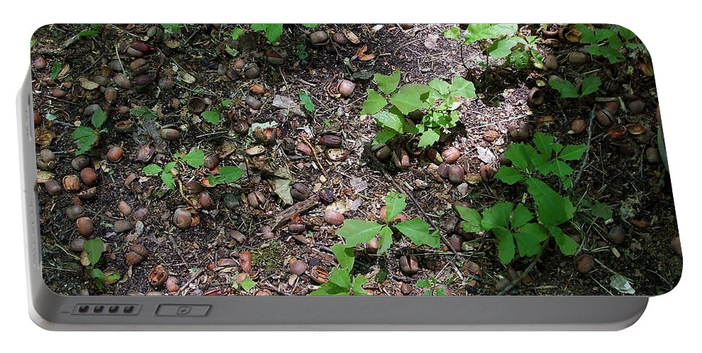 Masses Portable Battery Charger featuring the photograph Oak Nursery by Susan Wyman