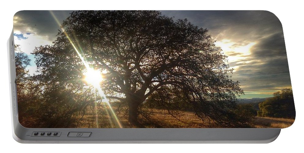Oak Tree At The Plateau Portable Battery Charger featuring the photograph Oak Tree At The Plateau by Christine Owens