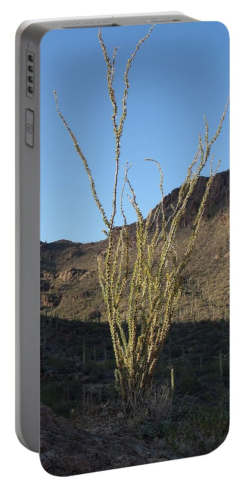 Arizona Portable Battery Charger featuring the photograph Ocotillo by David S Reynolds