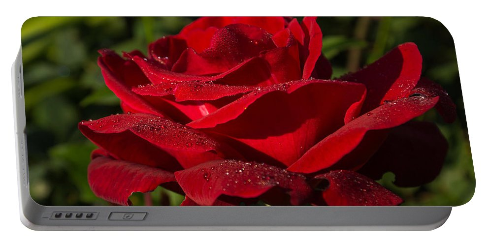 Red Rose Portable Battery Charger featuring the photograph Of Red Roses And Diamonds by Georgia Mizuleva