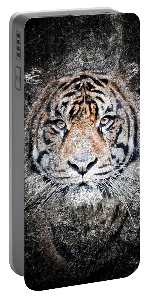 Tiger Portable Battery Charger featuring the photograph Of Tigers And Stone by Athena Mckinzie