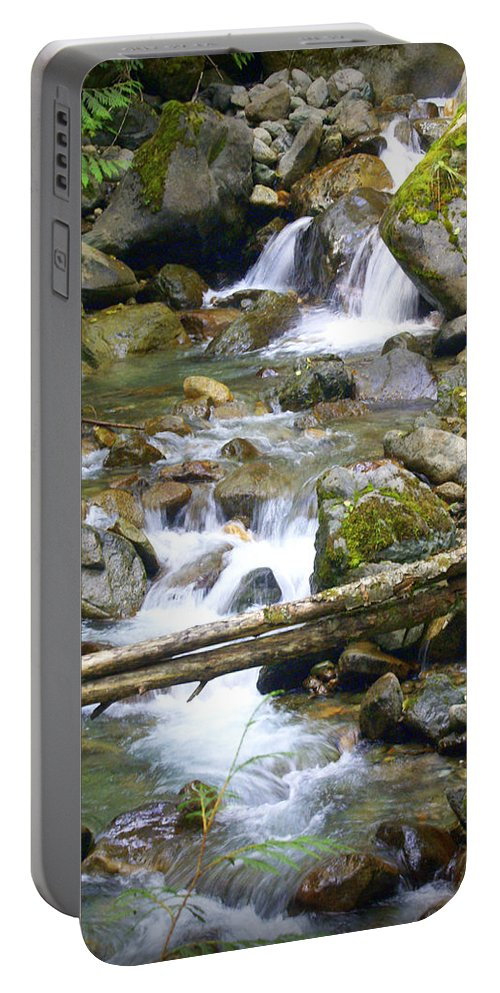 Olympic Mountains Portable Battery Charger featuring the photograph Olympic Range Stream by Marty Koch