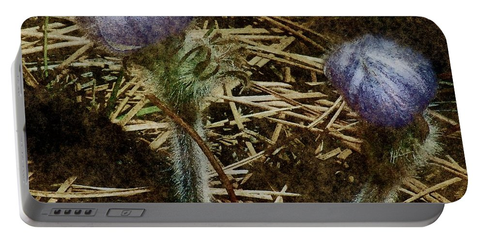 Colorado Portable Battery Charger featuring the painting On The Forest Floor by RC DeWinter