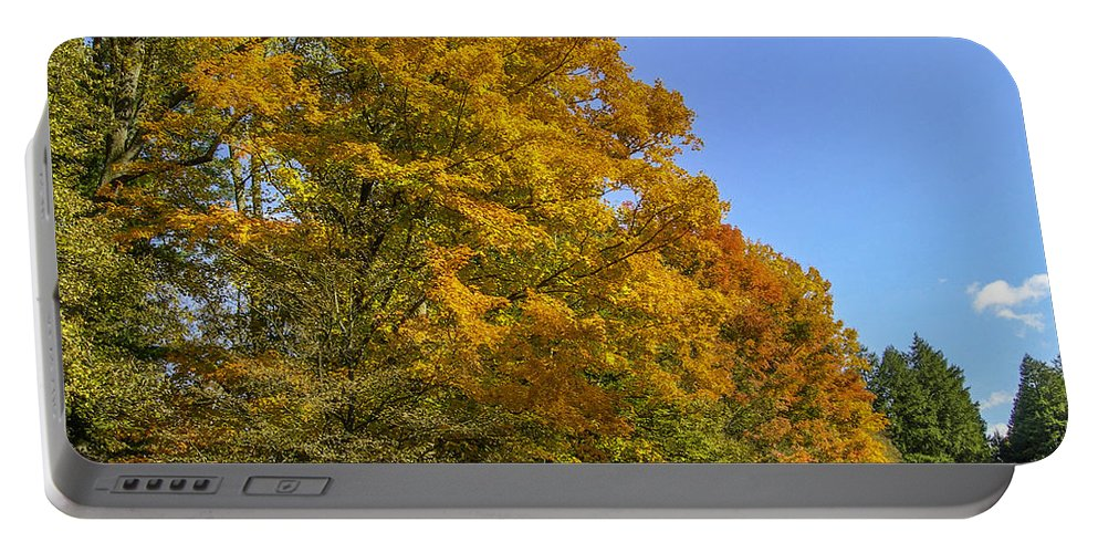 Fall Portable Battery Charger featuring the photograph On The Grounds Of Biltmore by Dale Powell