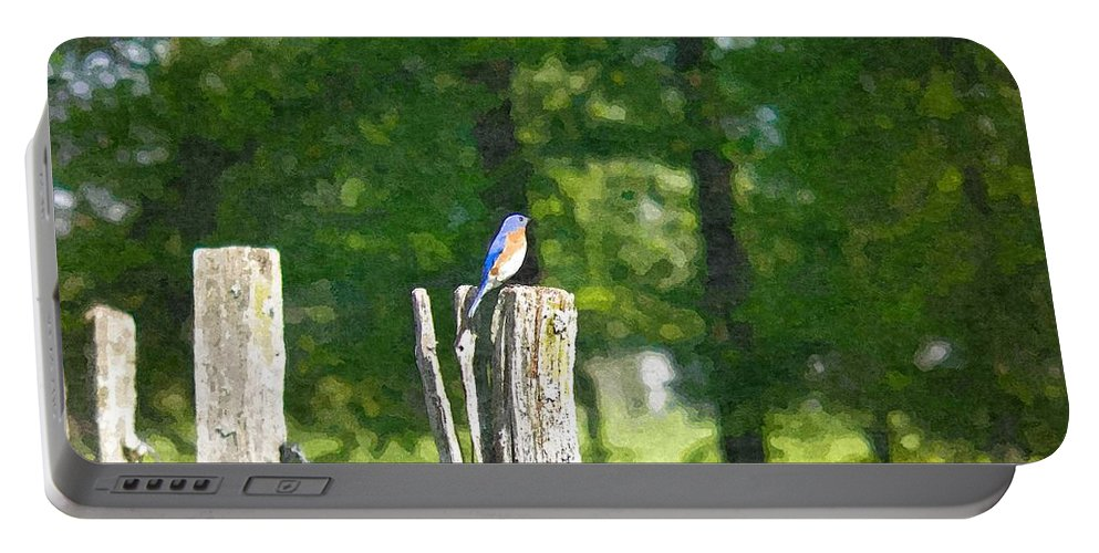 Bluebird Portable Battery Charger featuring the photograph On The Hunt 2 by Nick Kirby