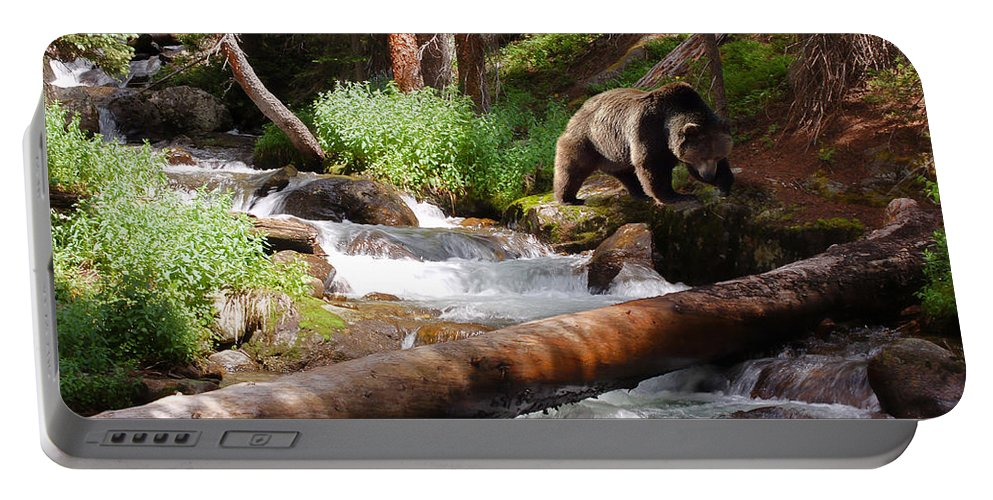 Grizzly Portable Battery Charger featuring the photograph On The Prowl by Ken Smith