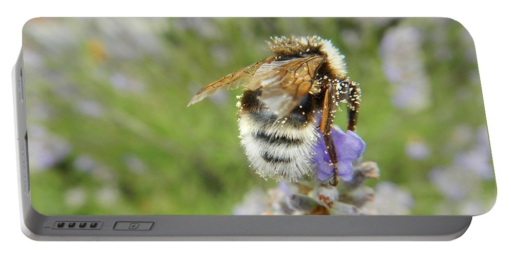 Nature Portable Battery Charger featuring the photograph On The Top by Loreta Mickiene