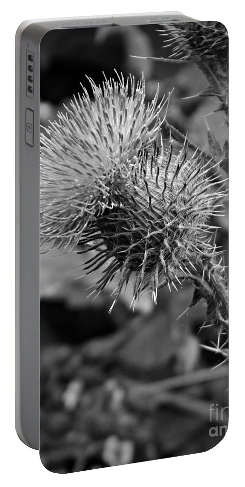 One Bw Portable Battery Charger featuring the photograph One Bw by Chalet Roome-Rigdon