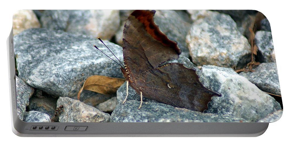 Digital Photography Portable Battery Charger featuring the photograph One Of The Twelve by Kim Pate