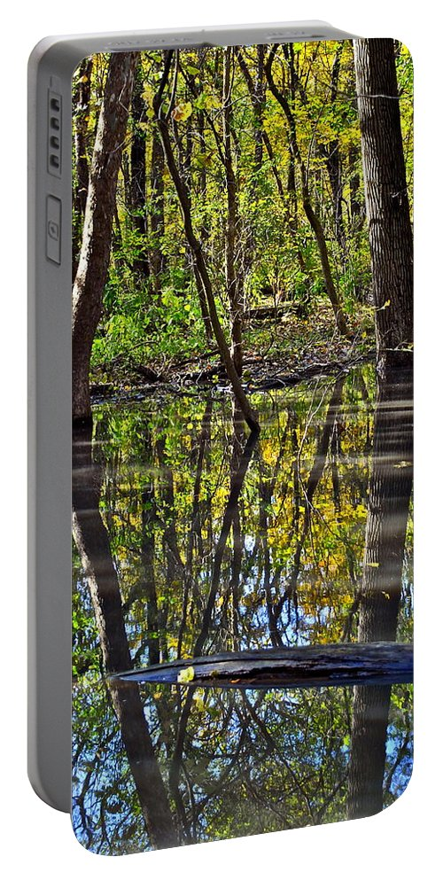 Reflection Portable Battery Charger featuring the photograph One Variable by Frozen in Time Fine Art Photography