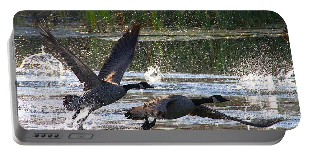 Canadian Geese Portable Battery Charger featuring the photograph One Winged Flight by Elizabeth Winter