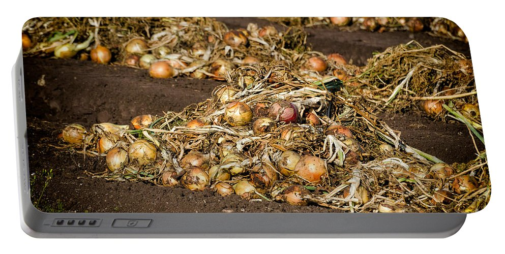 Onions Portable Battery Charger featuring the photograph Onions by Les Palenik