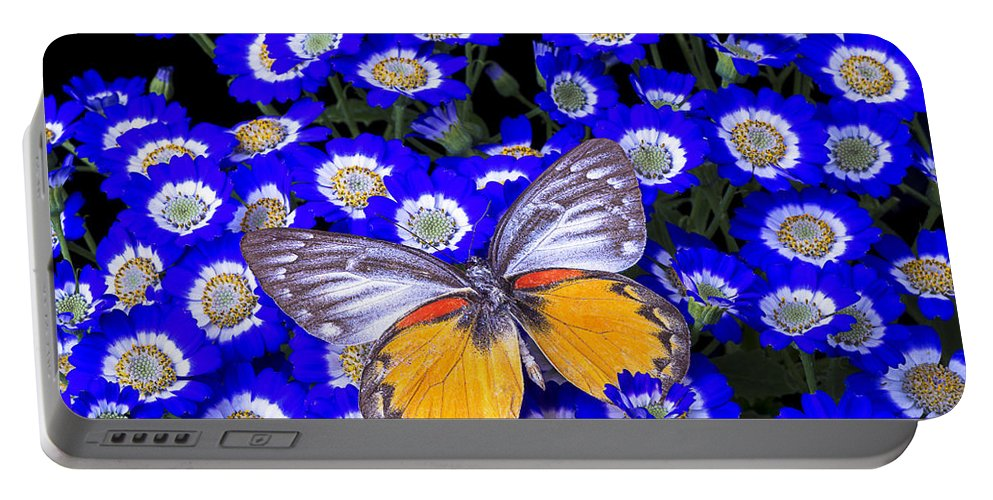 Portable Battery Charger featuring the photograph Orange And Gray Butterfly by Garry Gay