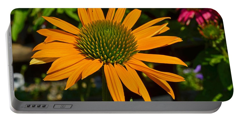 Nature Portable Battery Charger featuring the photograph Orange Cone Flower by Tikvah's Hope