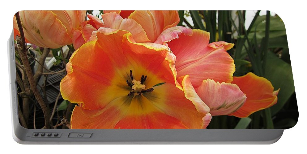 Portable Battery Charger featuring the photograph Orange Tulips by MTBobbins Photography