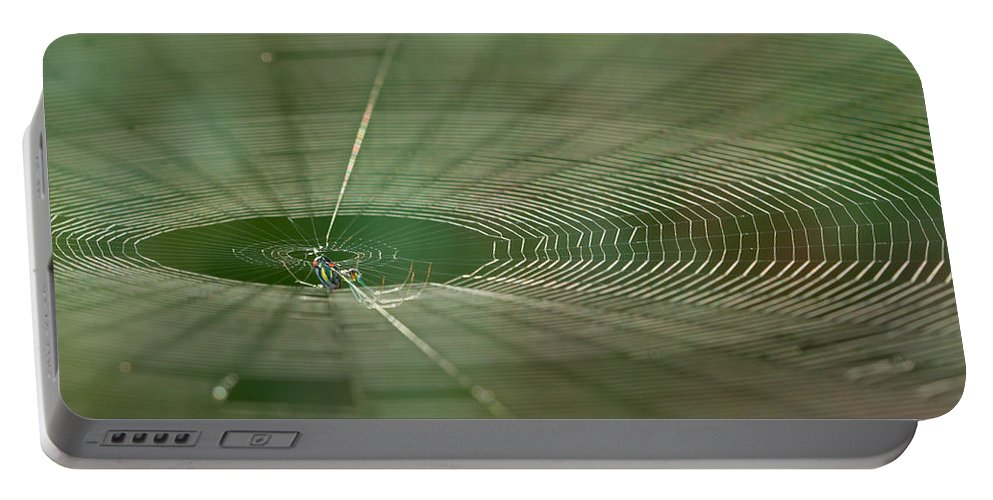 Spider Portable Battery Charger featuring the photograph Orchard Orbweaver #2 by Paul Rebmann