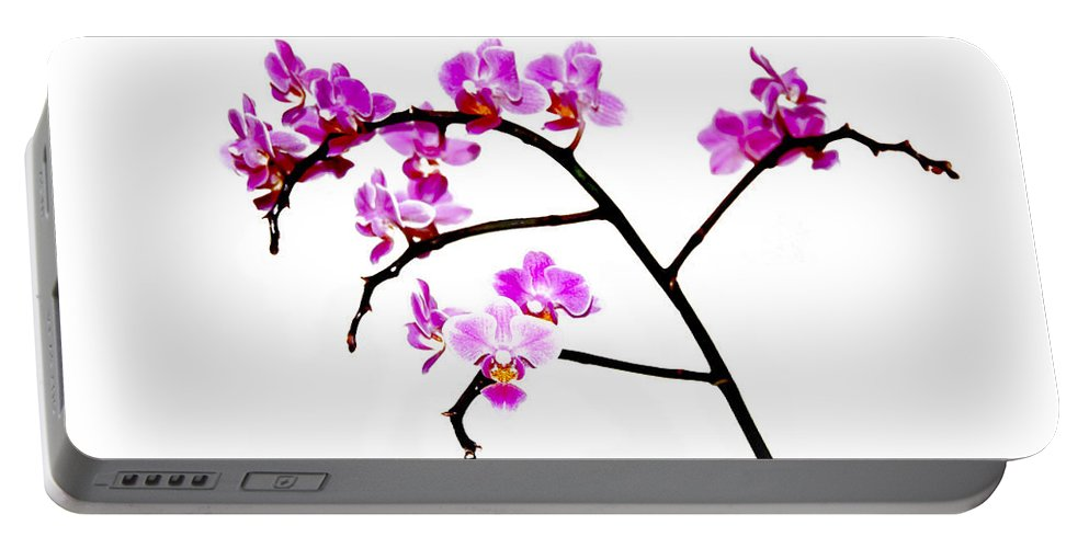 Orchid Portable Battery Charger featuring the digital art Orchid In White by Gina Dsgn