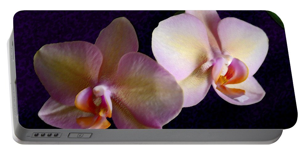 Orchid Portable Battery Charger featuring the photograph Orchid Light by Steve Karol