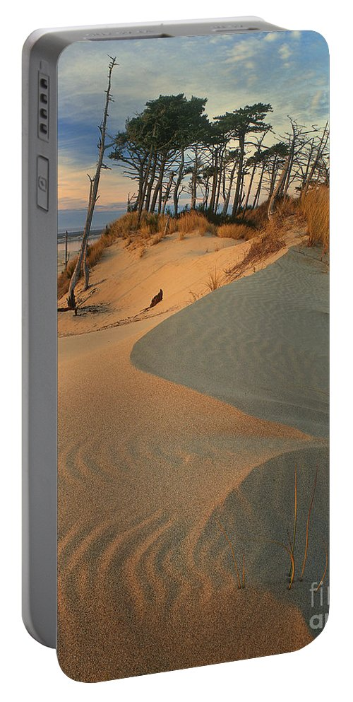 Dave Welling Portable Battery Charger featuring the photograph Oregon Dunes National Recreation Area Oregon by Dave Welling