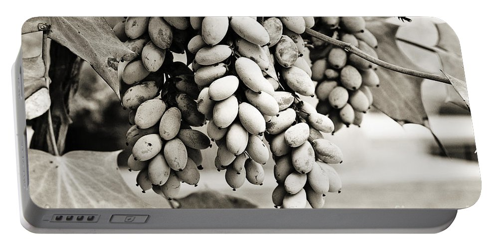 Sepia Portable Battery Charger featuring the photograph Ornamental Bush - Sepia by Scott Pellegrin