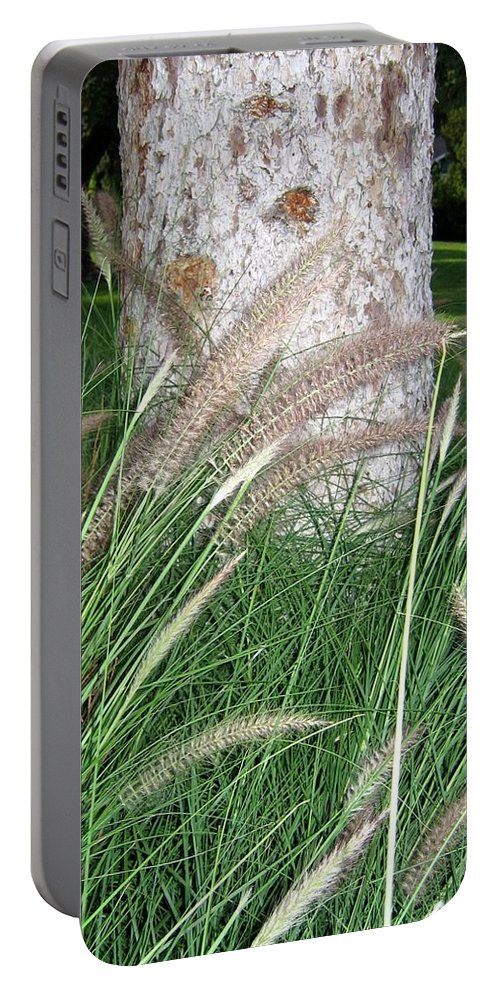 Ornamental Grass Portable Battery Charger featuring the photograph Ornamental Grass by Will Borden