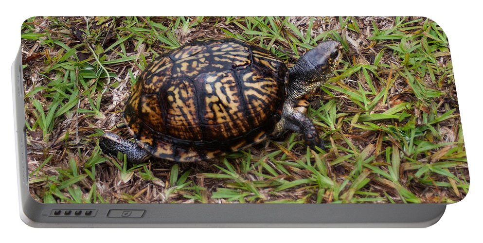 Ornate Box Turtle Portable Battery Charger featuring the photograph Box Turtle by Mechala Matthews