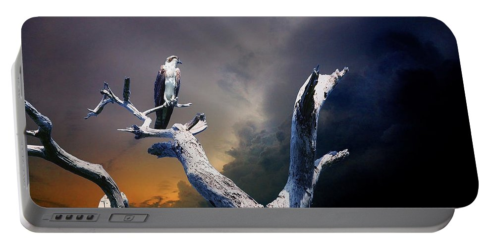 Osprey Portable Battery Charger featuring the photograph Osprey by Mal Bray
