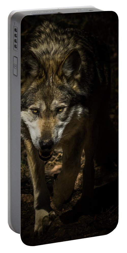 Wolf Portable Battery Charger featuring the photograph Out Of The Dark by Ernie Echols