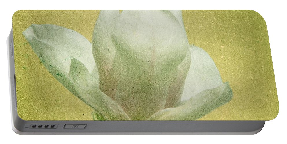 Bloom Portable Battery Charger featuring the photograph Outer Magnolia by Jeffrey Kolker