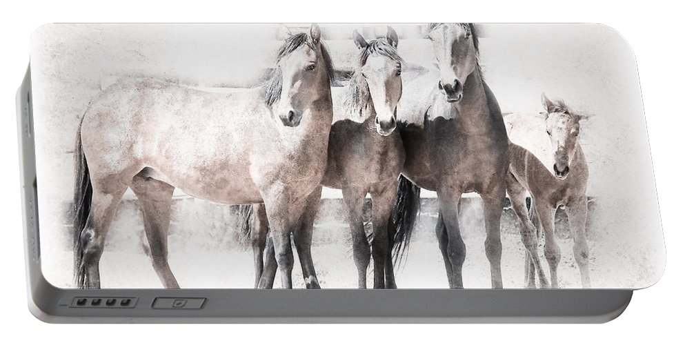 Horses Portable Battery Charger featuring the photograph Outlaws Xi by Athena Mckinzie