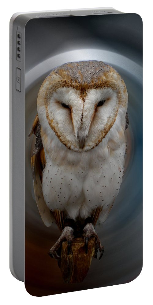 Colette Portable Battery Charger featuring the photograph Owl Alba Spain by Colette V Hera Guggenheim