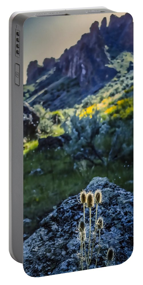 Owyhee River Portable Battery Charger featuring the photograph Owyhee River 1 by Mike Penney