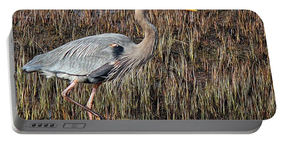 Great Blue Heron Portable Battery Charger featuring the photograph Pacer by Randy Hall