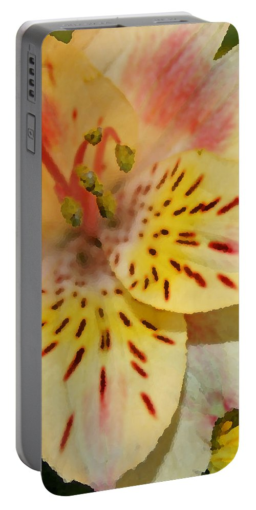 Lily Portable Battery Charger featuring the photograph Painted Lily by Susan McMenamin